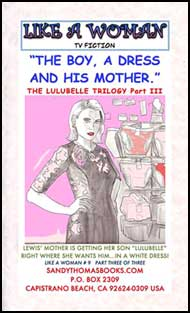 The Boy, A Dress, and His Mother Part 3 by Jane Kingsley and Sandy Thomas mags inc, crossdressing stories, forced feminization, transgender stories, transvestite stories, feminine domination story, sissy maid stories, Sandy Thomas, Jane Kingsley