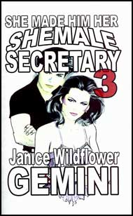 She Made Him Her Shemale Secretary Book 3 eBook by Janice Wildflower Gemini mags, inc, crossdressing stories, transvestite stories, female domination, stories, Janice Wildflower Gemini