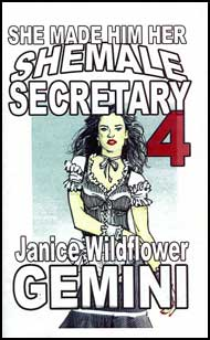 She Made Him Her Shemale Secretary Book 4 eBook by Janice Wildflower Gemini mags, inc, crossdressing stories, transvestite stories, female domination, stories, Janice Wildflower Gemini